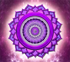Chakra 7 Crown Violet Symbol
